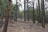0 Squirrel Trail - Photo 6