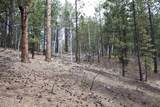 0 Squirrel Trail - Photo 7