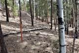 0 Squirrel Trail - Photo 9