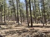 6 Pine Tree Rd - Photo 11