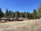 6 Pine Tree Rd - Photo 12