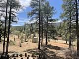 6 Pine Tree Rd - Photo 9