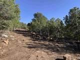 3270 Paseo Segunda (Stone Ridge) - Photo 6