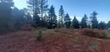 0 Aspen Bluff #3 - Photo 2