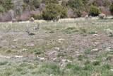 TBD Pacheco Road, Llano - Photo 17