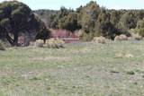TBD Pacheco Road, Llano - Photo 24