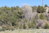 TBD Pacheco Road, Llano - Photo 30