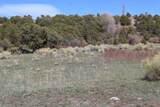 TBD Pacheco Road, Llano - Photo 42
