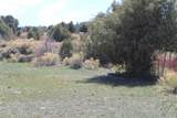 TBD Pacheco Road, Llano - Photo 51