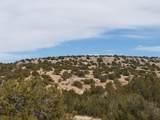 TBD Buffalo Trail - Photo 12