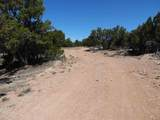 130 Deer Canyon Trail - Photo 2