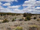 37 Arroyo Privado - Photo 5