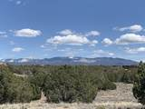 27 Camino Alazan (Tesoro Enclave, Lot 110) - Photo 8