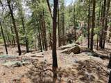 1198 Acres Off Of Goat Hill Road - Photo 2