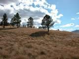 TBD Shields Area 40 Acres - Photo 3