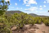 2220 Wilderness Meadow - Photo 31