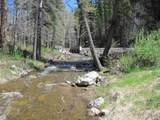 19 Holy Ghost Canyon (Cabin) - Photo 27