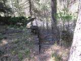19 Holy Ghost Canyon (Cabin) - Photo 32