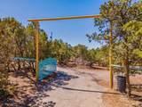 62 Apache Ridge - Photo 3