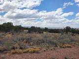 3333 Jumano Trail - Photo 4