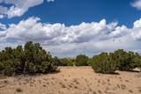 95 Silver Hills - Photo 11