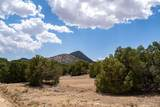 95 Silver Hills - Photo 5