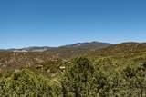 1448 Nevado Ridge - Photo 2