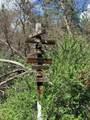 17 Pinos Altos Drive, Brazos Meadows - Photo 4