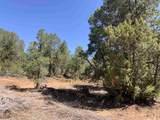 Lot C-5A5 Los Altos De Cicuye - Photo 2
