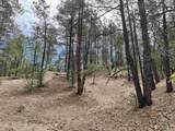 53 B Old Forest Trail - Photo 27