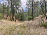 53 B Old Forest Trail - Photo 31