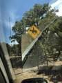 60 Soaring Hawk Trail - Photo 3