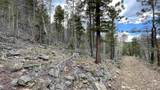 80 Acres Trumbell Canyon - Photo 13