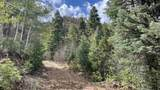 80 Acres Trumbell Canyon - Photo 15