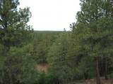 510 Nm State Road 512 - Photo 32