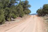 TBD Us Forest Rd #1008 - Photo 18
