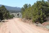 TBD Us Forest Rd #1008 - Photo 19