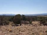 1202 Deer Canyon Trail - Photo 2