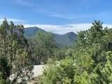 2108 Paseo Del Monte - Photo 3
