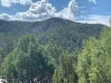 2108 Paseo Del Monte - Photo 4
