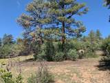 0 Buena Vista Dr - Photo 9