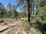 32 Pigeon Ranch Road - Photo 25