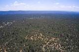 7800 Old Santa Fe Trail - Photo 3