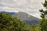 7800 Old Santa Fe Trail - Photo 5