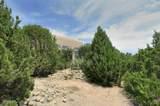 810 Camino Don Emilio - Photo 18