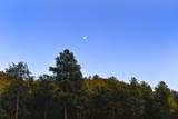 98 La Barbaria Trail - Photo 38