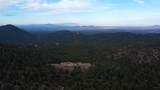 98 La Barbaria Trail - Photo 39