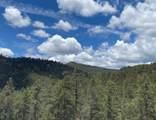 98 La Barbaria Trail - Photo 52
