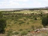 65 Conchas Dam Hwy 104 - Photo 25