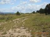 65 Conchas Dam Hwy 104 - Photo 40